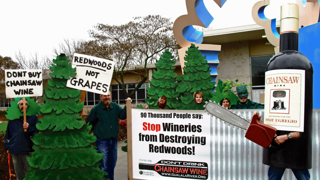 Environmental groups are fighting to stop the leveling of 154 acres of coast redwoods and Douglas firs to make way for grapevines.