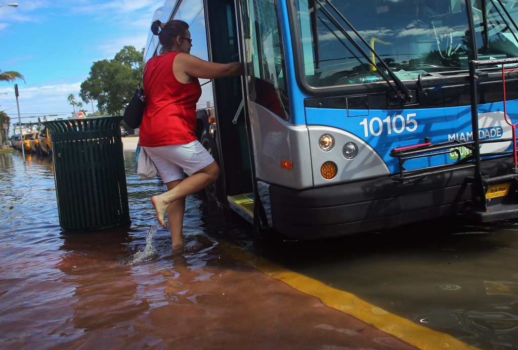 Cindy Minnix wades through a flooded street to get a  bus near where protesters were calling on the presidential candidates to talk about their plans to fight climate change on October 18, 2012 in Miami Beach, Florida.  Some of the streets on Miami Beach are flooded due to unusually high tides that the protesters felt are due to rising seas, which are connected to global warming and climate change. Published reports indicate that Florida ranks as the most vulnerable state to sea-level rise, with some 2.4 million people, 1.3 million homes and 107 cities at risk from a four-foot rise in sea levels.