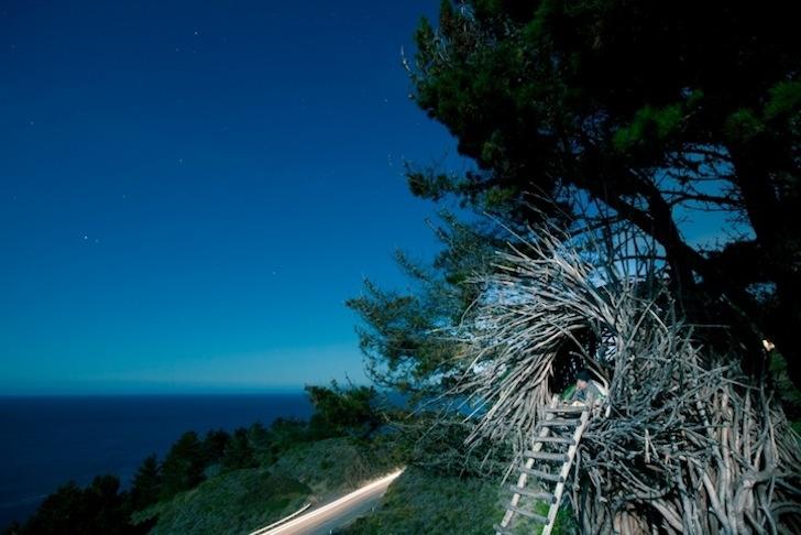 Jayson Fann's spirit nest.