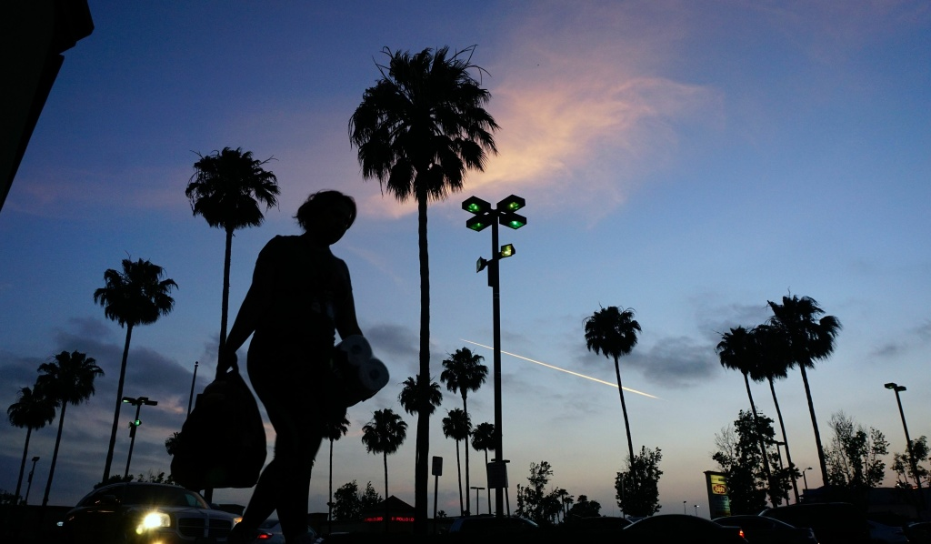 A woman carries her shopping past palm trees in Monterey Park, California shopping plaza on June 5 2017. Despite the diverse and ubiquitous number of palm trees in the Los Angeles area, only one species, the California fan palm, is native to California.