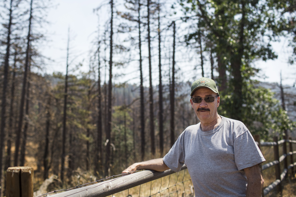 Bear Valley Springs resident Mark Anderson stands at the edge of his property, where many of his neighbors' Ponderosa Pines have also died. After 21 years, Anderson and his husband are now selling their home.