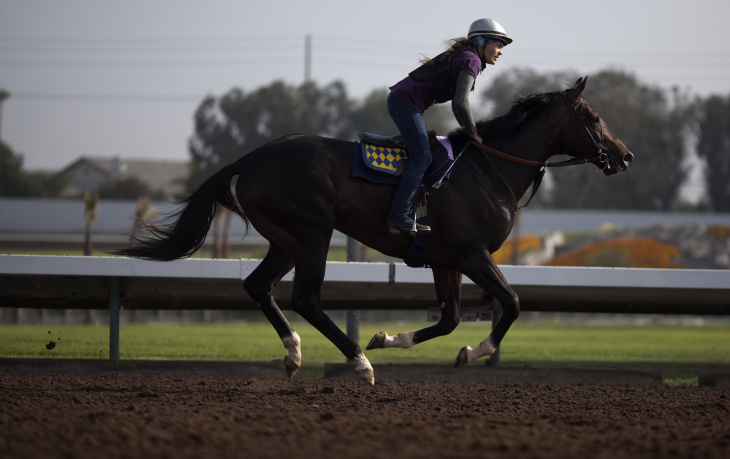 In the mornings at Los Alamitos Race Course horses are put through workout routines on the track. With the front-running race horse, California Chrome, stabled at Los Alamitos and a new one-mile track, thoroughbred racing is seeing a resurgence.