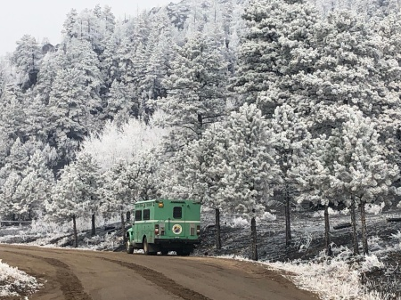 Light snow dusts the trees near the Cameron Peak Fire in Rocky Mountain National Park in Colorado on Friday.