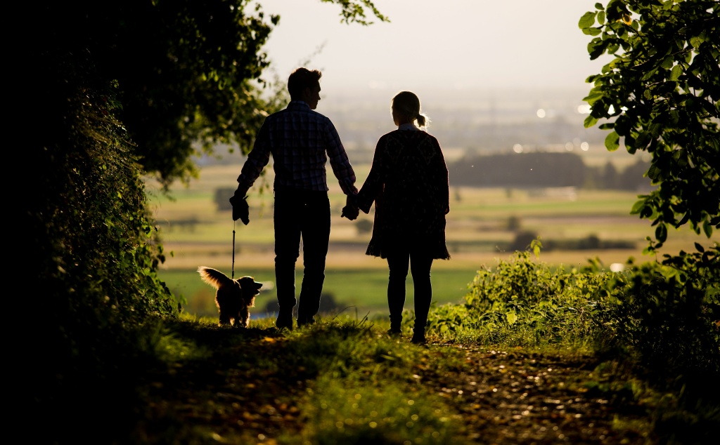 A young couple walk their dog on a forest trail near Staufen, southern Germany, on September 5, 2016.