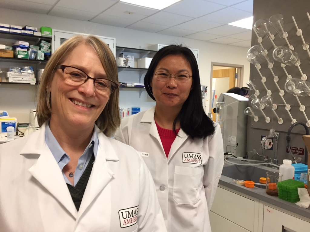 UMass food scientists Lynne McLandsborough, left, and Lili He are researching ways to use your smartphone to detect bacteria in food.