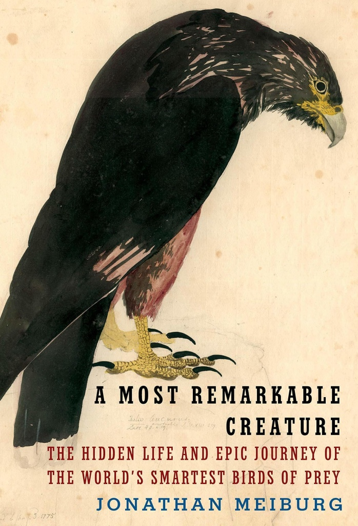 <em>A Most Remarkable Creature: The Hidden Life and Epic Journey of the World's Smartest Birds of Prey,</em> by Jonathan Meiburg