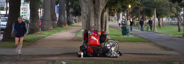 A homeless person sleeps under a tree, protecting himself against rain and cold, 17 January 2007 in Santa Monica, California.