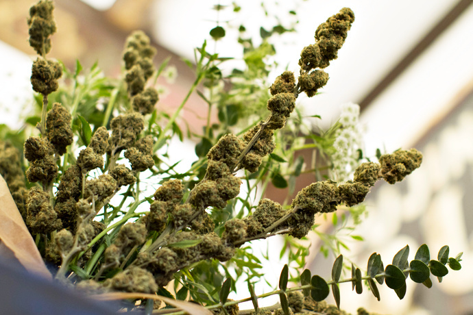 Say it with flowers: Cannabis flowers
