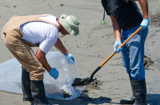Workers shovel oiled sand hit by the BP Deepwater Horizon oil spill from the Gulf of Mexico to be disposed as cleanup crews work to clean the beach at Grand Isle State Park in Grand Isle, Louisiana.