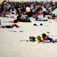 Sydney Swelters Under Hottest New Year's Day On Record