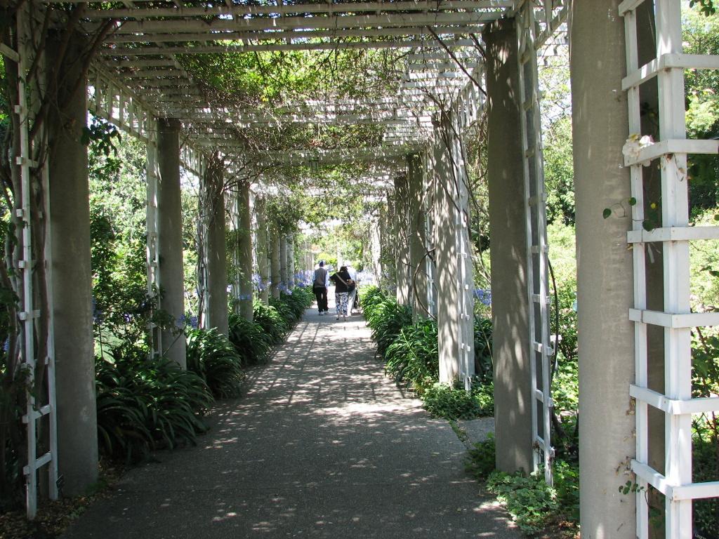 The Huntington Library Gardens