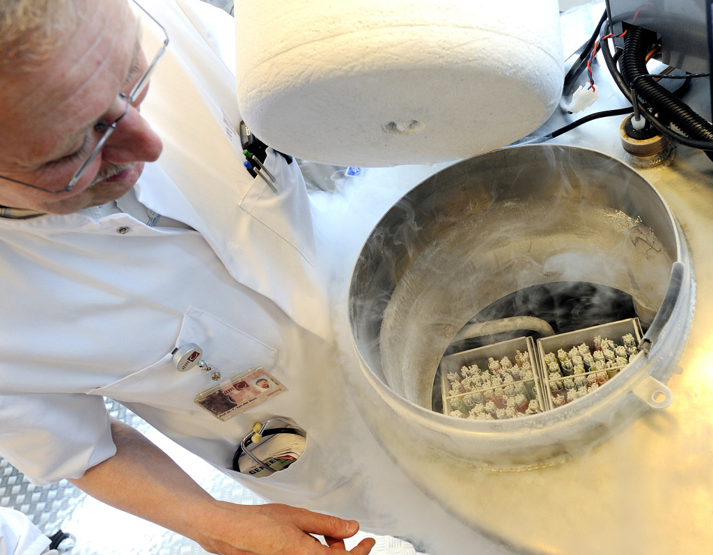 A technician opens a vessel containing women's frozen egg cells on April 6, 2011 in Amserdam.