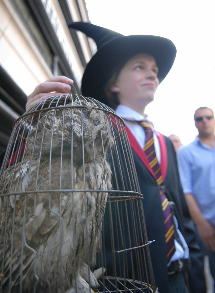 Oscar Sieling from Copenhagen holds up his stuffed owl as he waits for the release of the final installment of the Harry Potter series of books at Waterstones bookstore on Piccadilly in London, 20 July 2007.