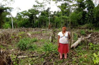 Ana Hualinga, a local leader of the indigenous Achuar people in San Cristobal, Peru, stands in a former community garden and tree nursery. She says the land was recently cleared by the oil company Pluspetrol, without consulting the community.