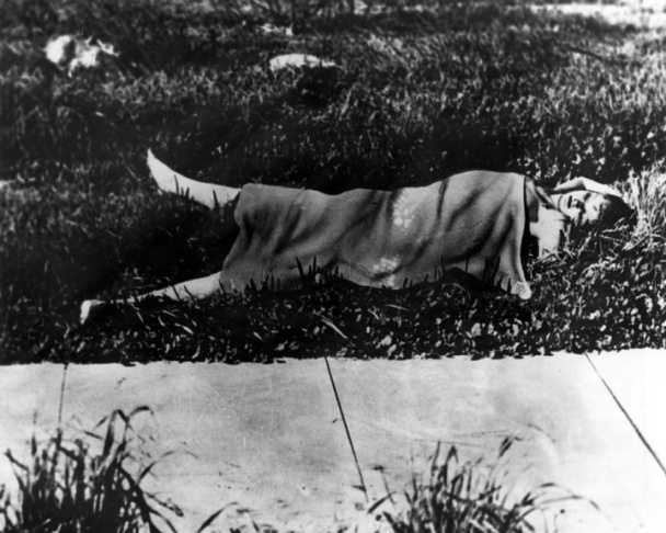 Elizabeth Short's body, as it was found 67 years ago today, except that it's covered by a blanket, hiding the fact that it had been cut in two at the waist.