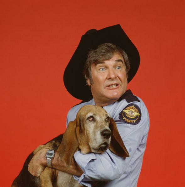 American actor James Best (as Sheriff Roscoe P. Coltrane) looks unnerved as he holds his dog, 'Flash' (played by Sandy,' a basset hound). in a publicity still from the television series 'The Dukes of Hazzard,' 1982. (Photo by CBS Photo Archive/Getty Images)