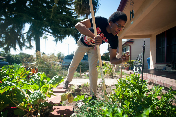 Sidewalk Farming - 6