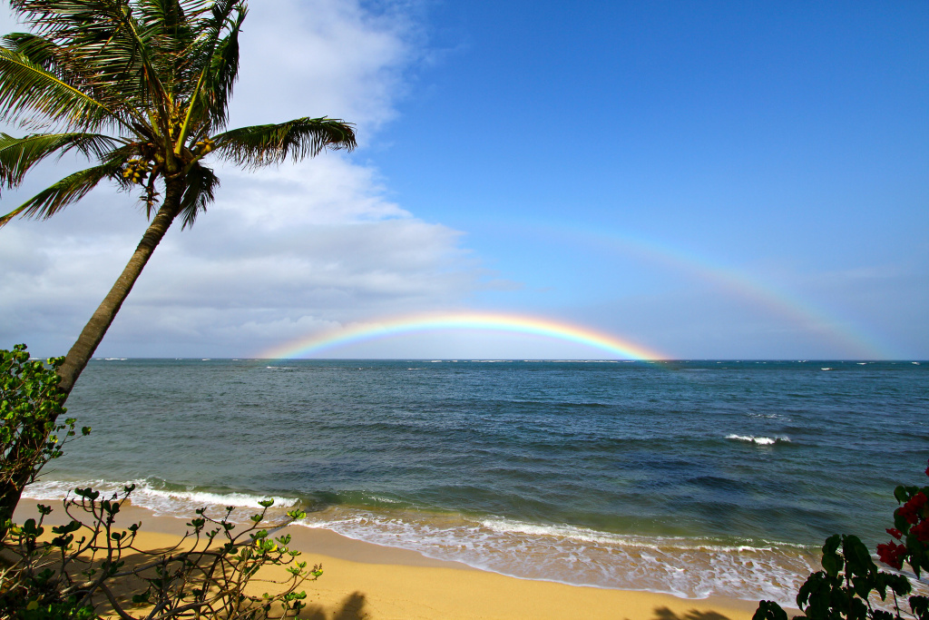 The north shore of Oahu in Hawaii.