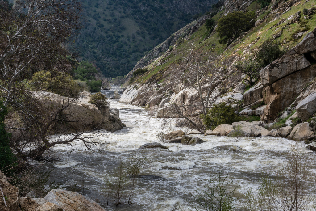 The Kern River flowing outside of Bakersfield in late March 2017, following the spring snowmelt. Swift, high waters are making for a deadly year for drownings on the river.