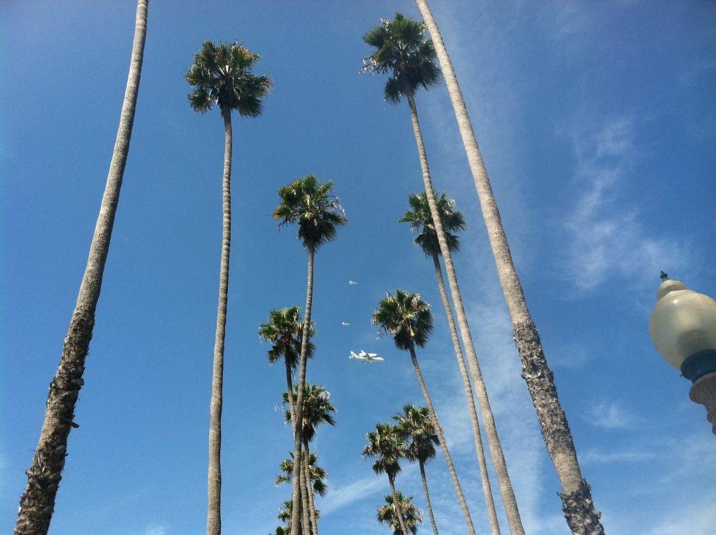 Ocean Boulevard in Santa Monica