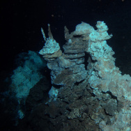 Loki's Castle, the field of deep sea vents between Norway and Greenland, is home to sediments containing DNA from the newly discovered archaea.