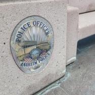 Anaheim police generic