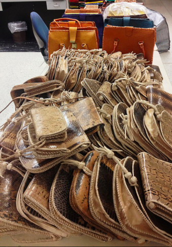 May 6 - May 12, 2013: LOS ANGELES - U.S. Customs and Border Protection officers intercepted and seized nearly half a pound of elephant meat and a dead primate at the International Mail Facility. They also seized 387 snake, lizard and crocodile skin handbags from a passenger arriving from Nigeria at the Los Angeles International Airport (LAX).