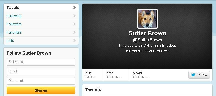 Governor Jerry Brown's dog, Sutter Brown, has a Twitter account with over 5,000 followers. Who's the real handler and are there political motives?