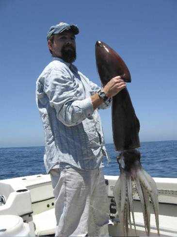 This March 2005 image provided by the National Marine Fisheries Service shows John Hyde, a marine biologist with the National Marine Fisheries Service, holding a Humboldt squid, also known as a jumbo flying squid, caught off the San Diego coast. The rare squid have returned to the area wreaking havoc on local divers.