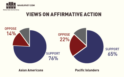 affirmative action in canada essay Affirmative action prejudice equality essays - affirmative action in the united states.