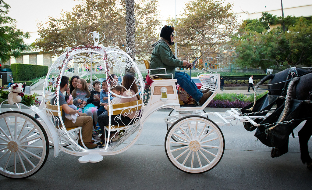 Visitors ride in a festive horse carriage at the 2016 South Lake Holidayfest.