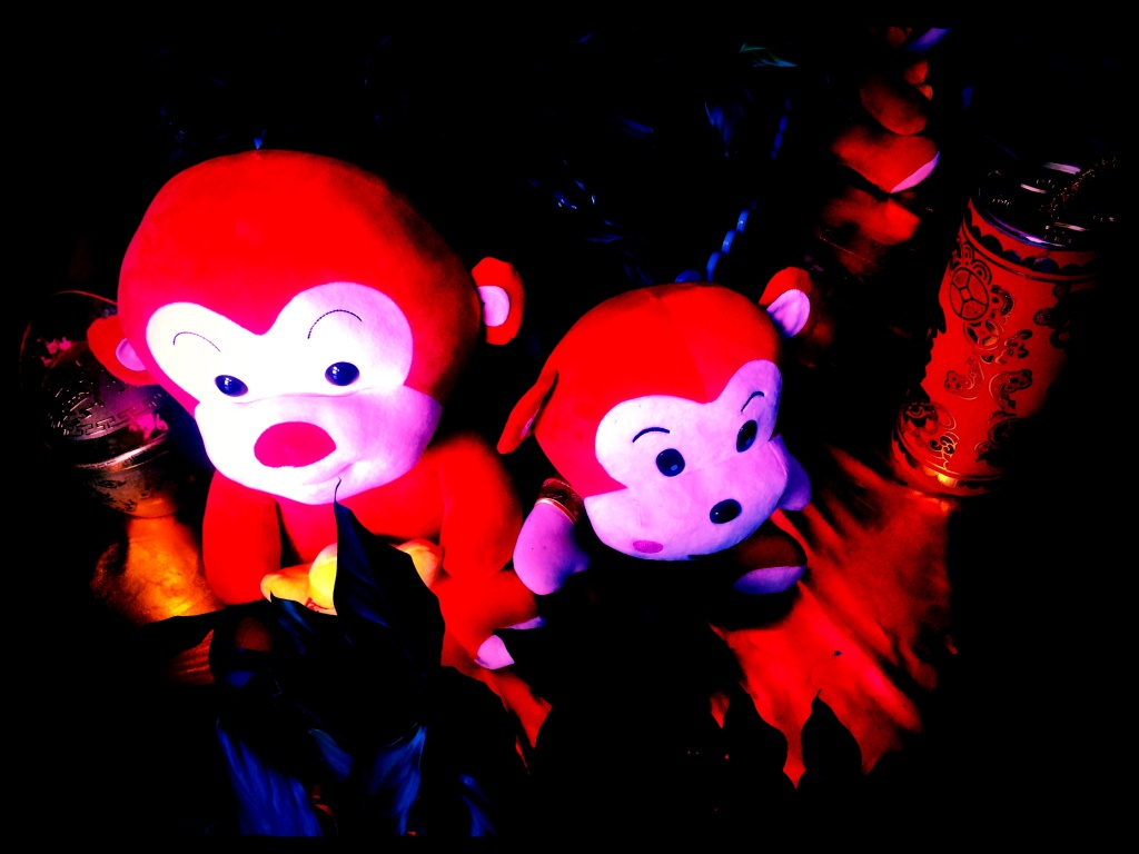 File photo. 2016 is the year of the monkey.