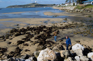 (L - R) Leighana Murphy and Ted Lanpher walk across a portion of a beach between tsunami surges on March 11, 2011 in Half Moon Bay, California.