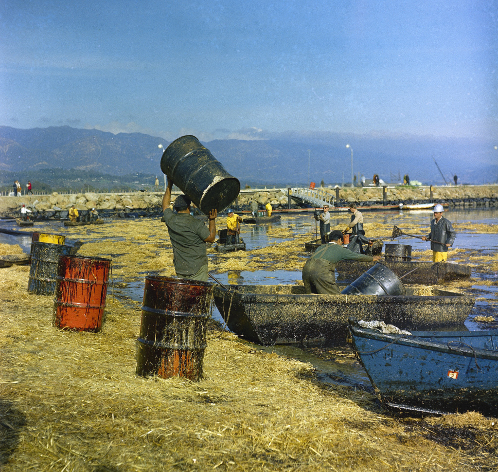 In this Feb. 7, 1969 file photo, workers collect oil-soaked straw from the beach at Santa Barbara Harbor, Calif., following a leak from an off-shore well that covered area beaches. California commissions that oversee coastal lands and water pushed the Trump administration to leave the state out of plans to expand offshore drilling, warning the state would block the construction of pipelines to get oil back to land. The agencies weighed in ahead of a public meeting Thursday, Feb. 8, 2018, in Sacramento.