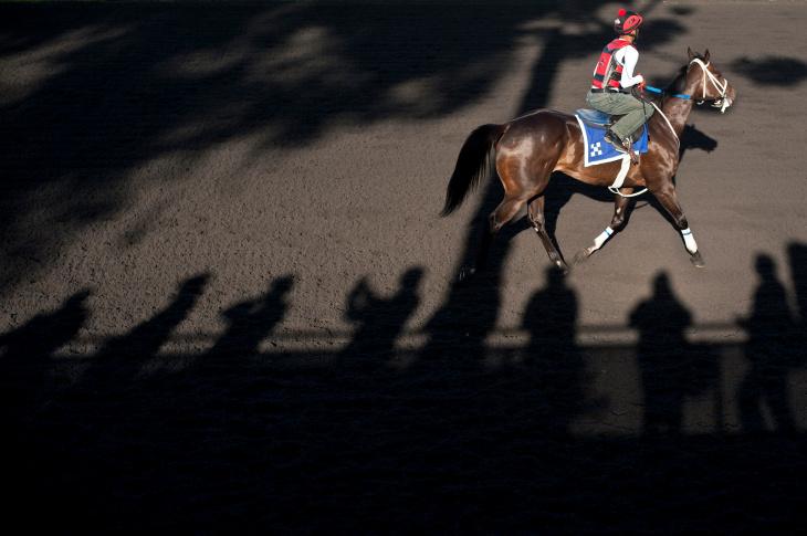 HORSE RACING - 2
