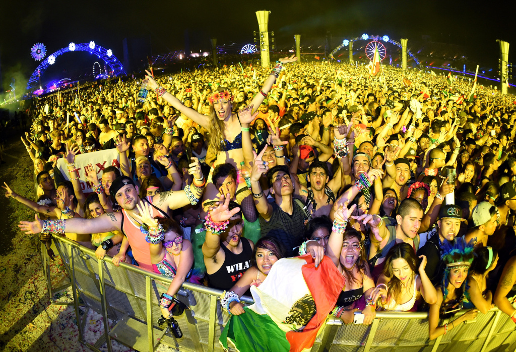 Fans react as Tiesto performs during the 18th annual Electric Daisy Carnival at Las Vegas Motor Speedway in this file photo taken June 22, 2014 in Las Vegas, Nevada. Tickets for next year's EDC went on sale Monday, December 1, 2014.