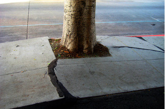 Los Angeles may not pay for cracked sidewalks anymore