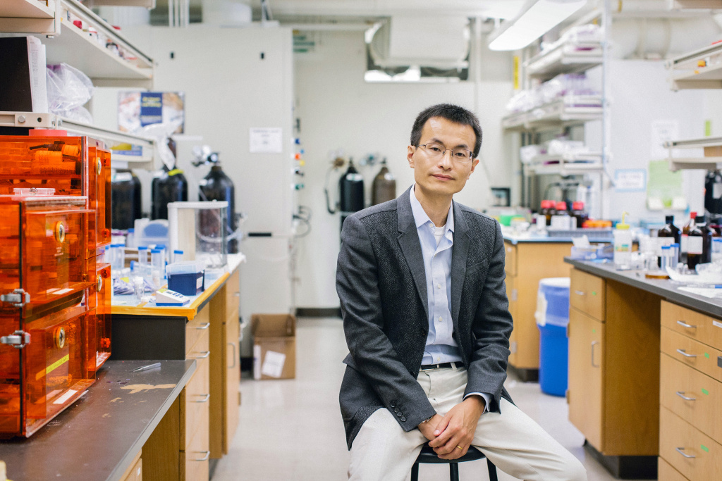 Peidong Yang is photographed in his lab, office and on campus at UC Berkeley in Berkeley, California, Monday, Sept. 14, 2015.