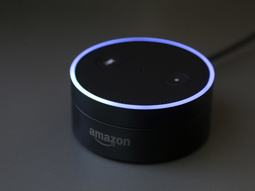 Gizmodo's Kashmir Hill tried to disconnect from all Amazon products — including its smart speakers — as part of a bigger experiment in living without the major tech players.