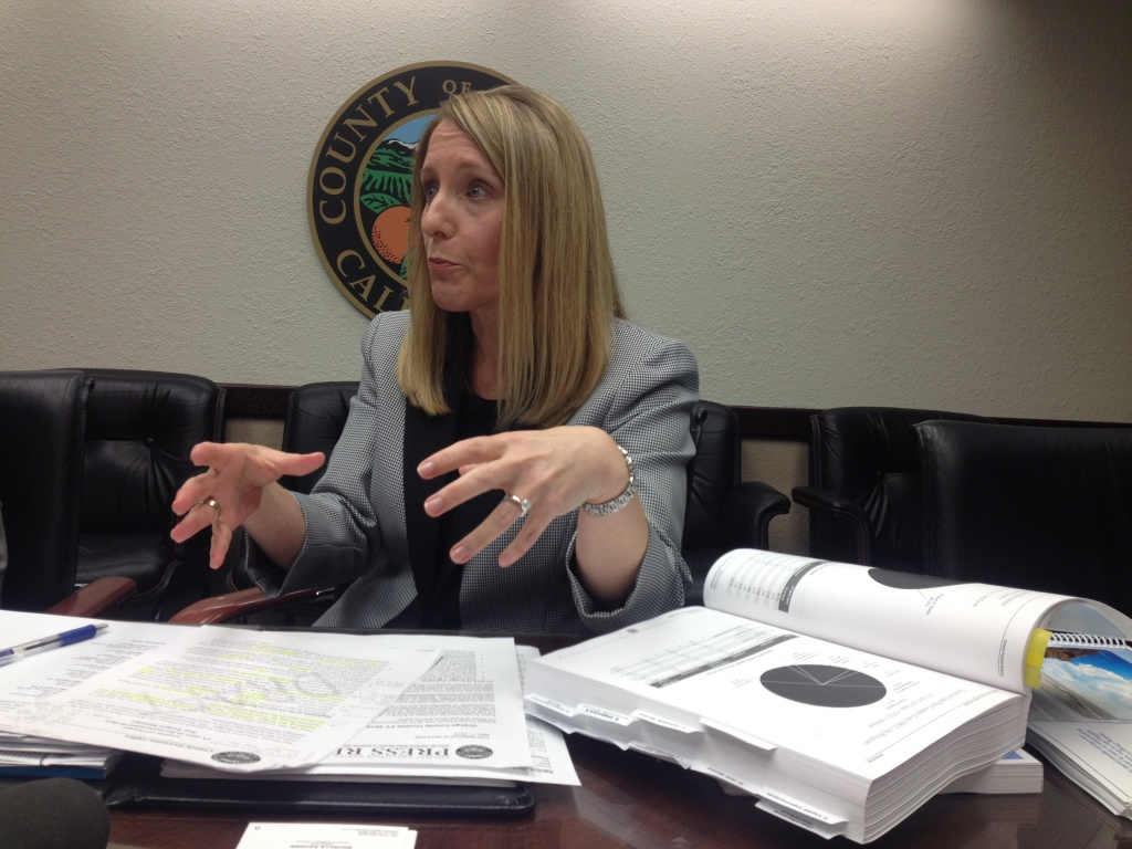 Orange County Budget Director Michelle Aguirre said the county's proposed $5.7 billion budget plan for FY 2015-2016 includes $15.9 million to pay for one-time projects that county has put off since the recession.