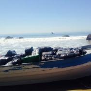 Malibu panga boat