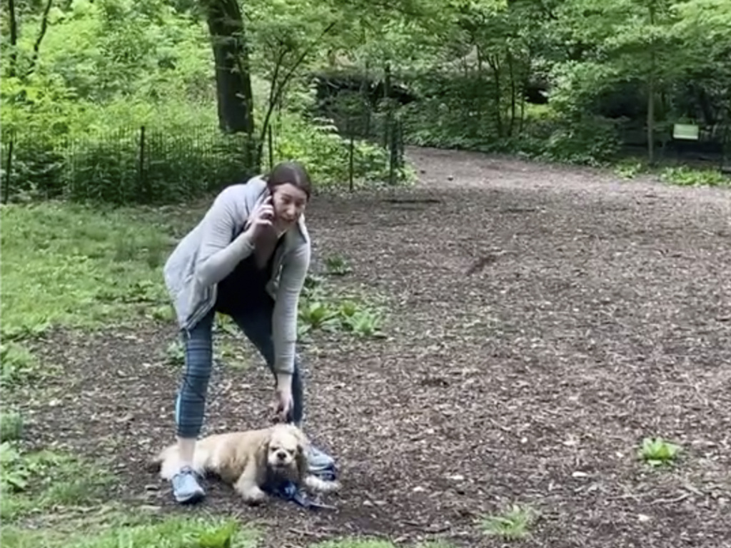 The Manhattan district attorney dropped a charge against Amy Cooper, above, for calling police on a Black man after he asked her to leash her dog in New York's Central Park.