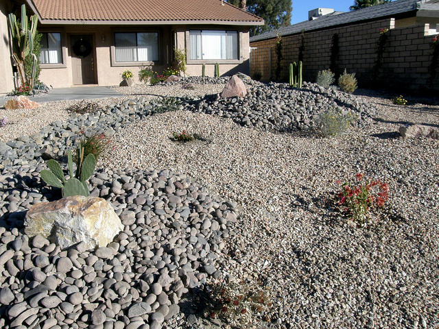 A xeriscaped lawn in Palm Desert, California