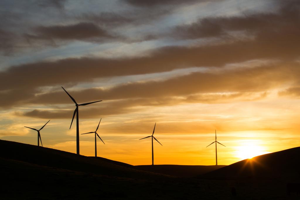 File photo of a wind farm.