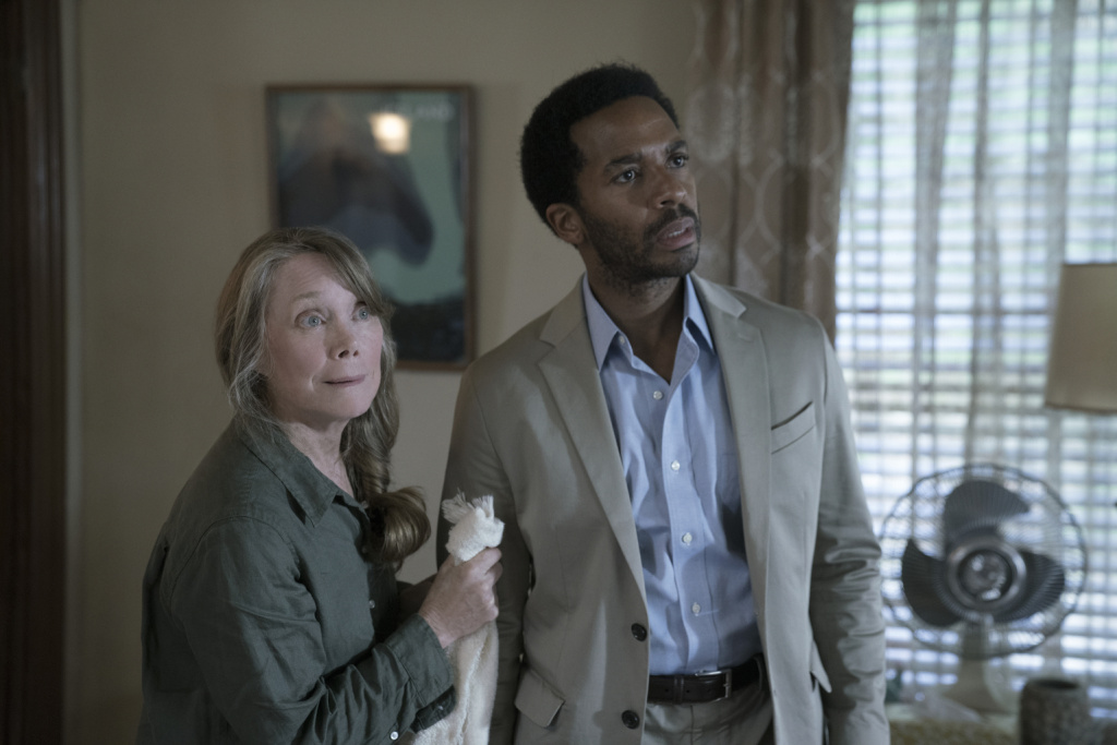 Sissy Spacek and Andre Holland are in the cast of the Hulu series,
