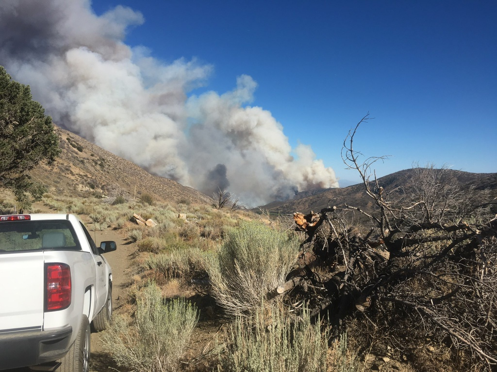 An image from the Blue Cut Fire tweeted by the San Bernardino County Fire Department on Tuesday, Aug. 16, 2016.