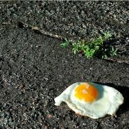 heatwave egg sidewalk street
