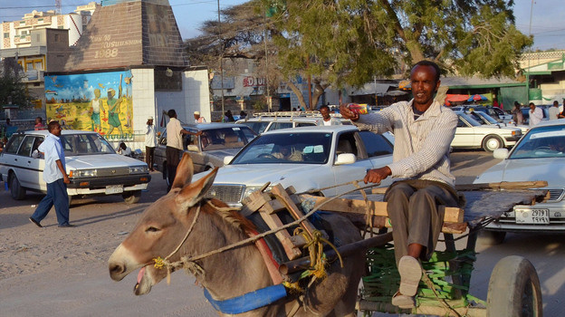 Somalia is synonymous with failed states, pirates and Islamist militants. But in the nation's northwest lies a peaceful, stable territory known as Somaliland.