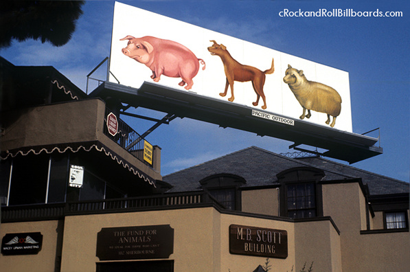 Pink Floyd billboard for record