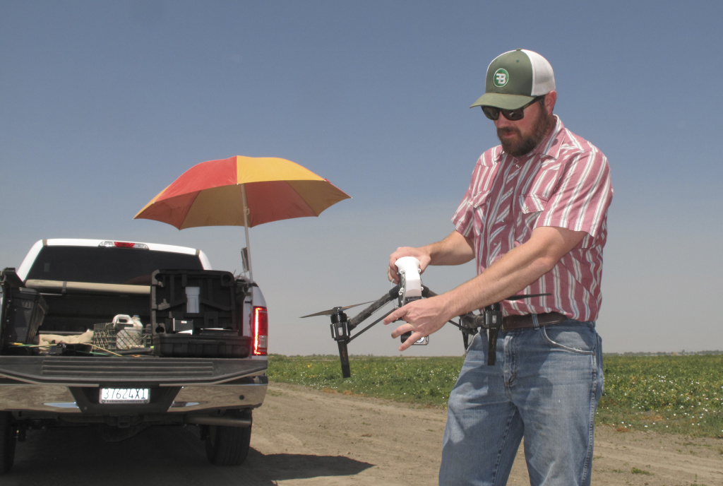 In this photo taken July 25, 2016, Danny Royer, vice president of technology at Bowles Farming Co., prepares to pilot a drone over a tomato field near Los Banos, Calif. The farm hired Royer this year to oversee drones equipped with a state-of-the-art thermal camera. The drone can scan from a bird's-eye view for cool, soggy patches where a gopher may have chewed through the buried drip irrigation line and caused a leak of water, a precious resource in drought-stricken California. On the farm's 2,400-acre tomato crop alone, this year drones could detect enough leaks to save water needed to sustain more than 550 families of four for a year.